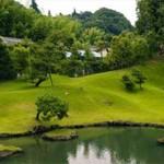 Наш новый проект — коттеджный городок Forest Park.